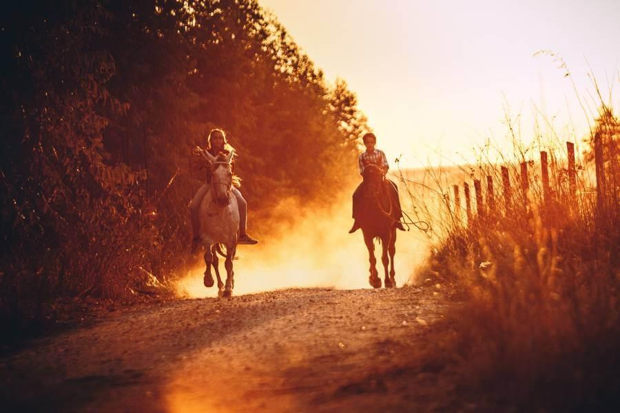 horse-back-riding-Zakynthos-Cruises